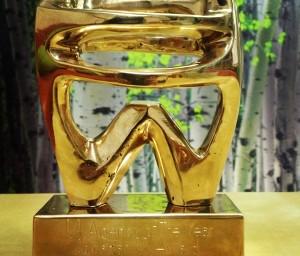 The Practice's Agency of the Year award - Romanian PR Award 2012