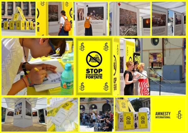 Board Amnesty