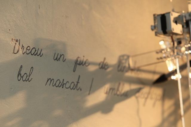 Prima poeziei din Casa Poeziei2_small