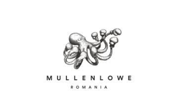 Lowe Romaniarebrands MullenLowe Romania, followingan international rebranding