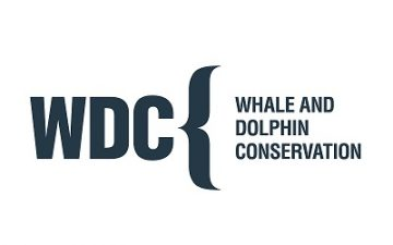 Conran Design Group to develop Whale and Dolphin Conservation 30th anniversary brand identity